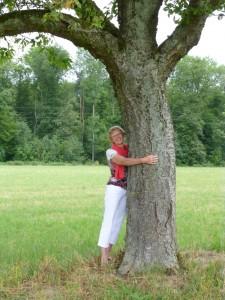 Sabine Herbst-die Kraft des Baumes